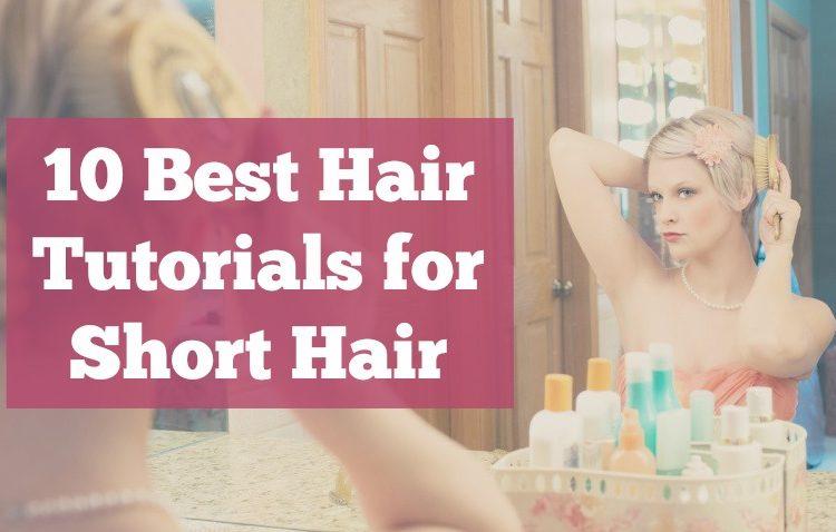 10 best hair shorthair